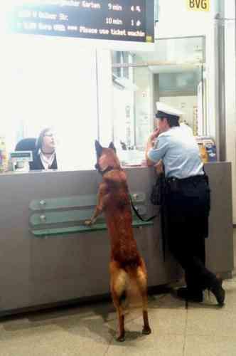杉本彩「犬は手回り品ではなく家族」日本の新幹線に犬と乗って感じたドイツとの格差