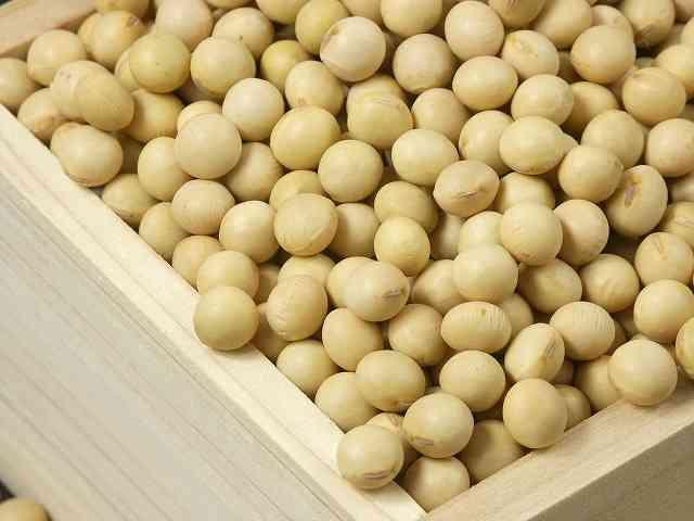 米粉に次ぐブーム、ヘルシーな大豆粉が人気