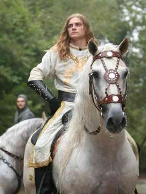 理想の王子様のスペックについて語りましょう!