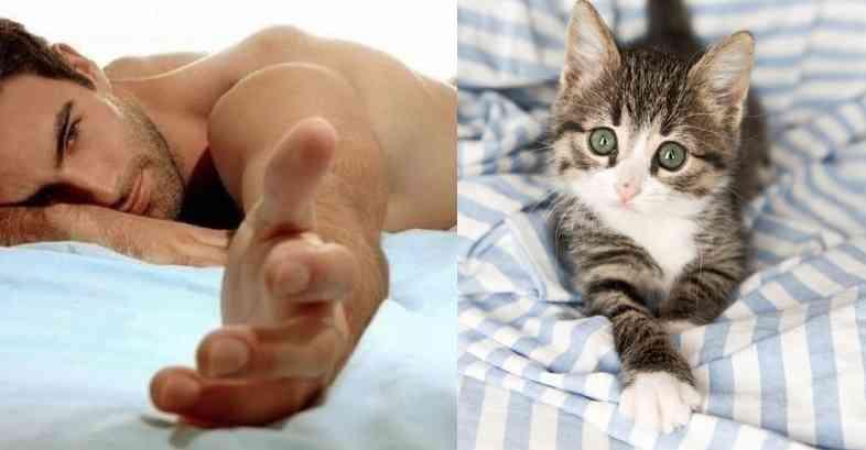 みんな大好き!「イケメンとネコ」が同じポーズをとってる比較写真20選