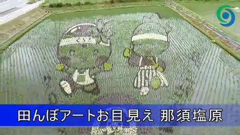 日本の「田んぼアート」がスゴいことになってる!