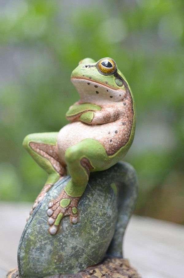 【苦手な人注意】インドネシアで傘をさしたカエルが激写される!可愛いと話題にww