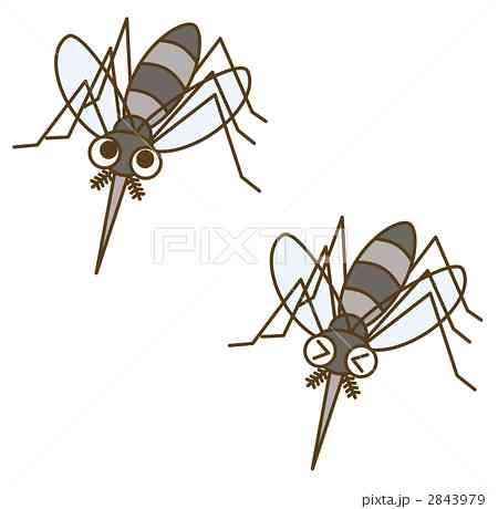 腐女子が擬人化させた蚊のイラストをご覧ください