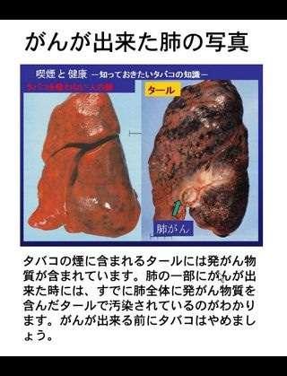 来年4月の消費税増税に合わせ、たばこ全銘柄10~20円値上げ