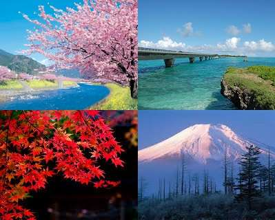日本の好きなところ