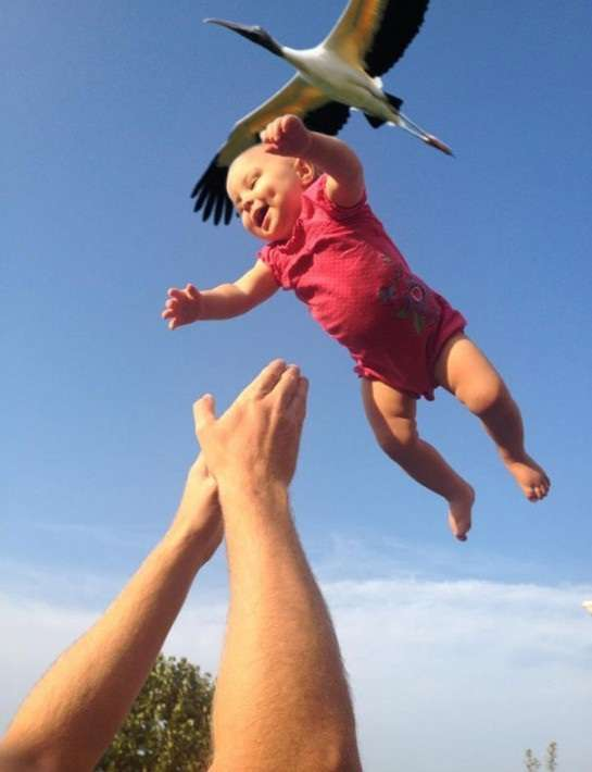 中西モナ、双子の1人を流産「お空に帰っていってしまいました」