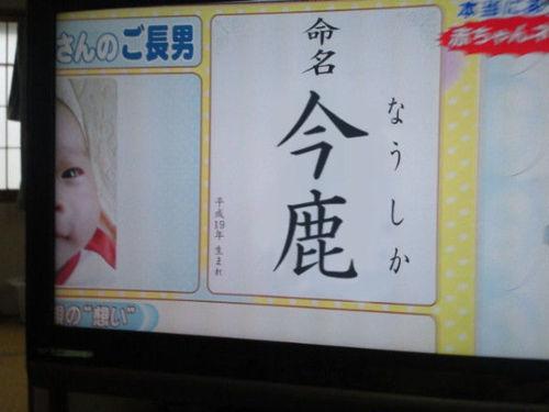 「風の谷のナウシカ」、年内最後(12/27)の金曜ロードショーに登場!16回目のテレビ放送!