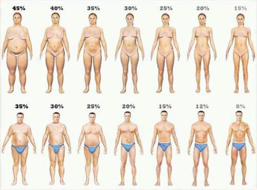 「ぽっちゃり女子」人気はマスコミの捏造でした!本当にモテる体型が判明