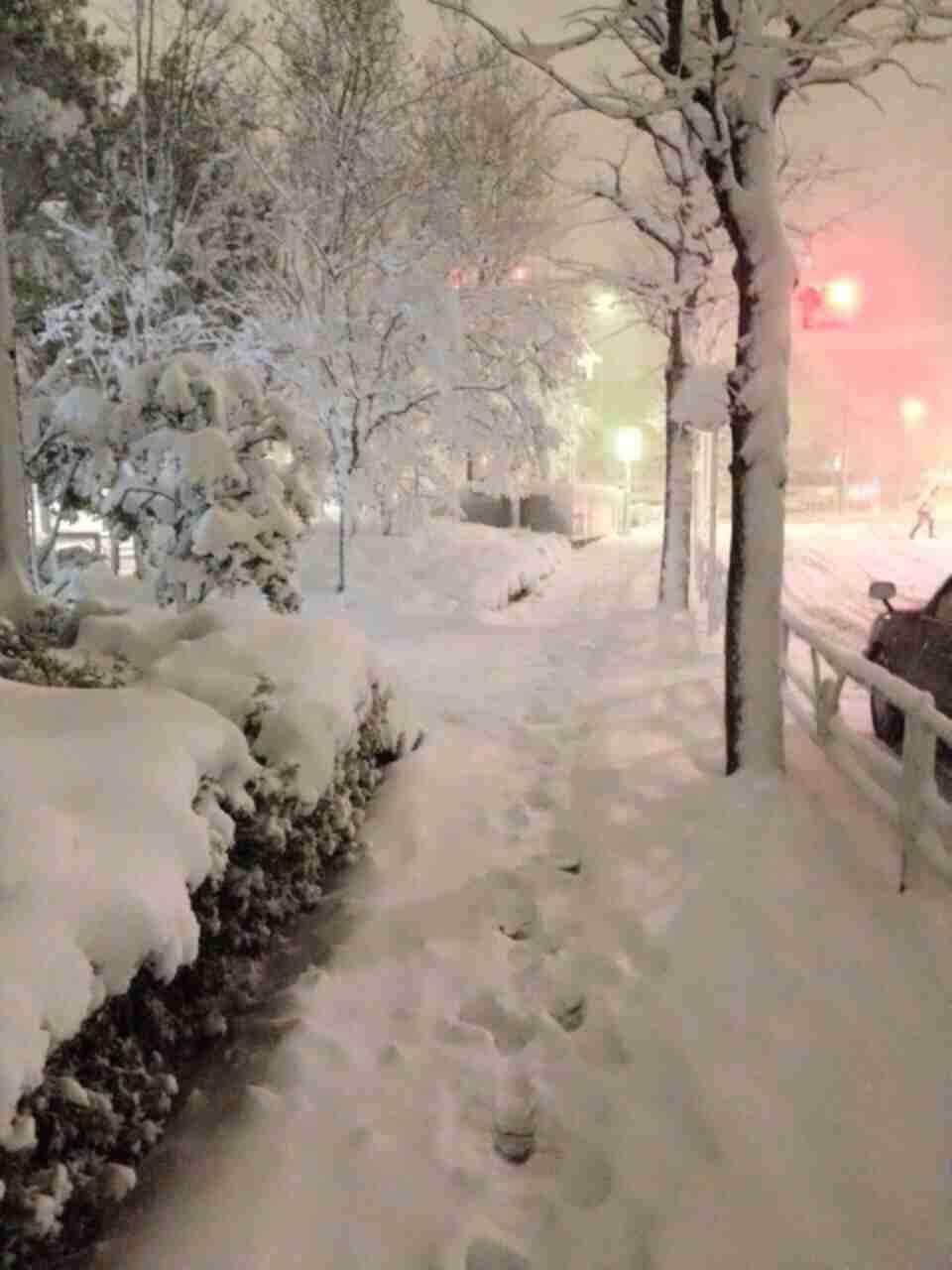 【大雪】関東各地で記録的積雪 東京都心で25cmも