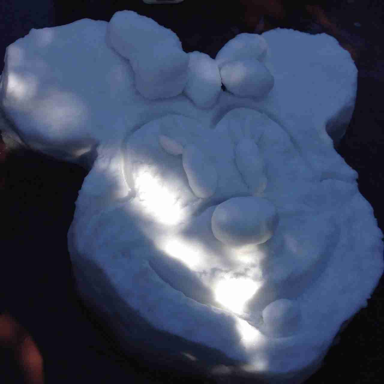 【話題】ディズニーランドは雪でもすごい!