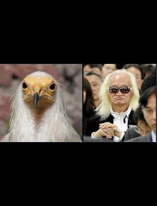 内田裕也、佐村河内守氏を痛烈批判!「人間として恥ずかしくないのか」
