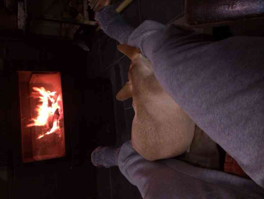 最強の暖房器具教えてください