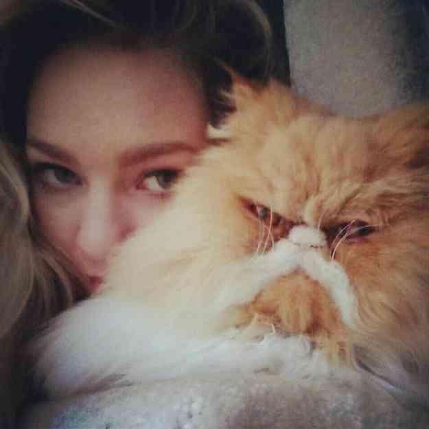 猫はしかめっつらしててもかわいい!