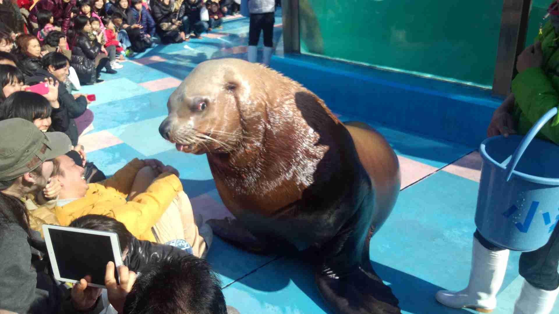 オススメの動物園・水族館を教えて!