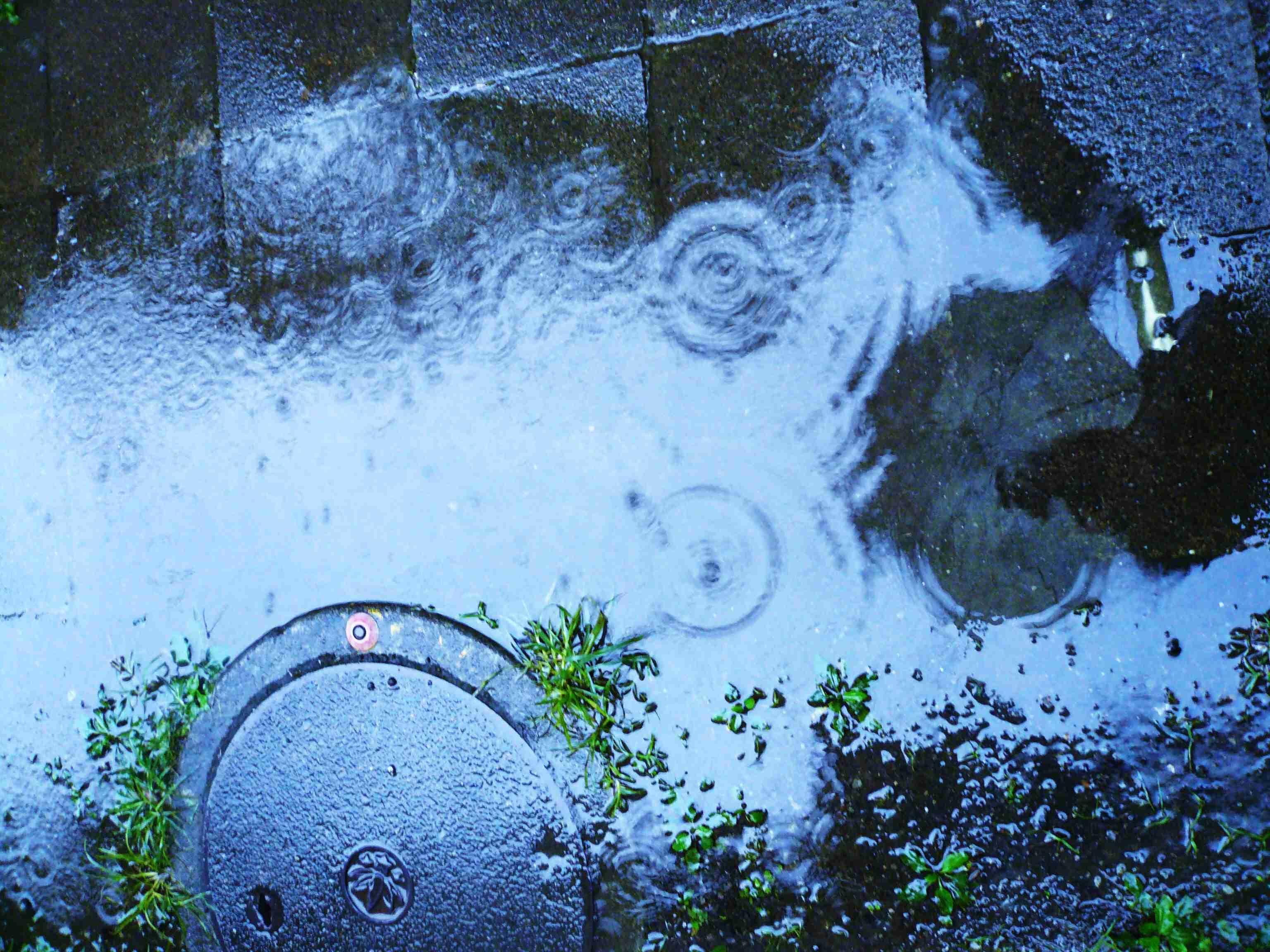 雨の日が好きな人