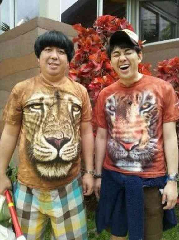 ライオンとトラのバナナマンの壁紙