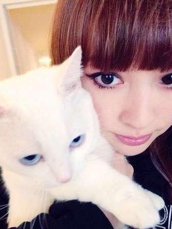 猫好きな鈴木えみ。