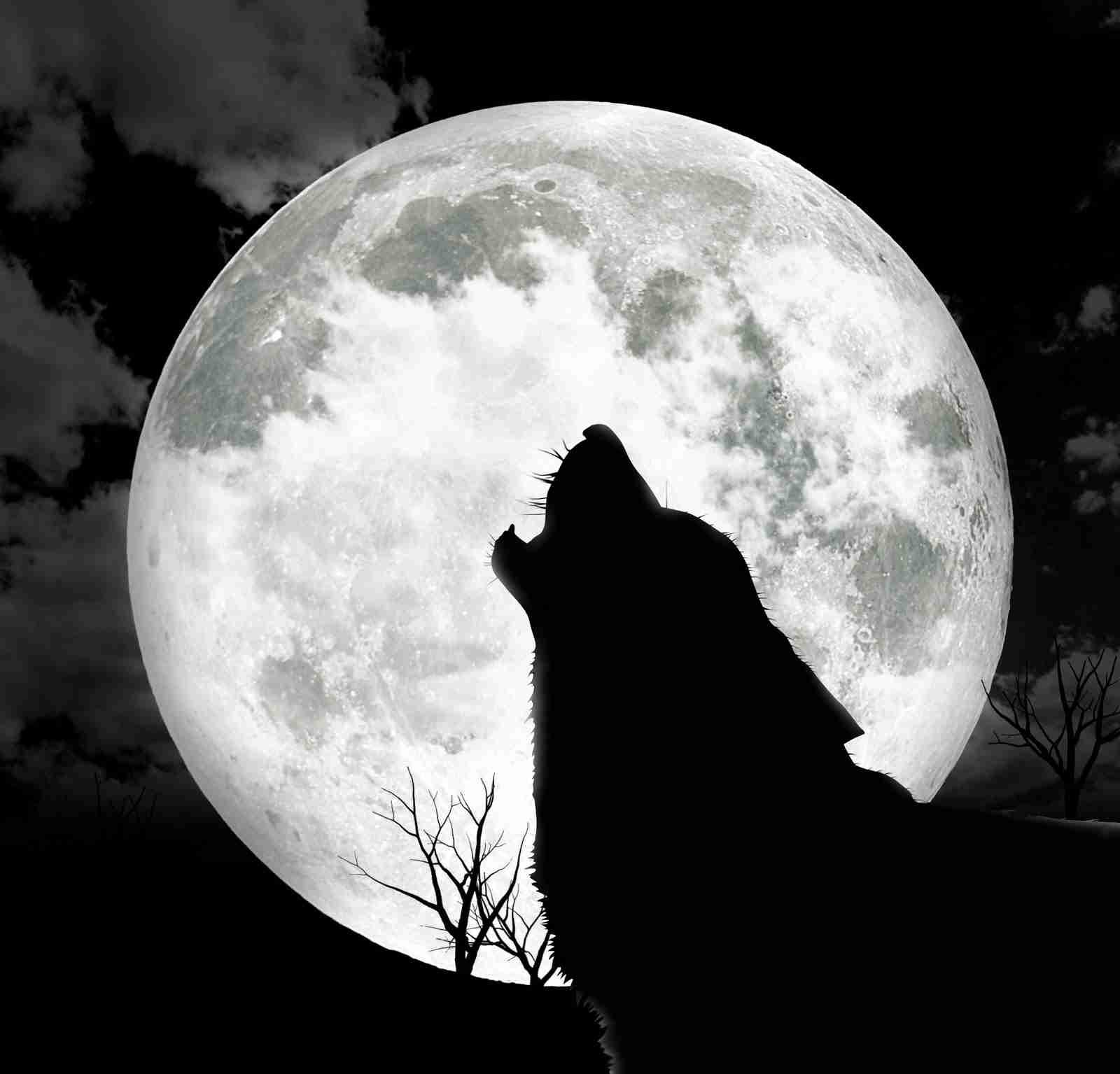 8月10日夜、今年最も大きい満月に