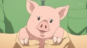 【閲覧注意?】日本のスーパーが子豚をまるまる冷凍して販売してると話題に