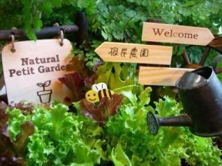 家庭菜園のおすすめ