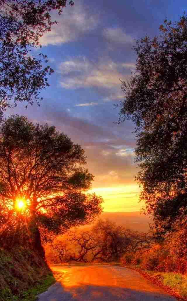 癒される風景写真(風景写真の癒やし効果、予想以上 見るだけで疲れ軽減)
