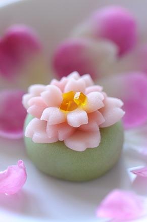 春らしいお菓子