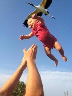 「ねぇ、赤ちゃんてどうやったらできるの?」と子供に聞かれたら何と答えますか?