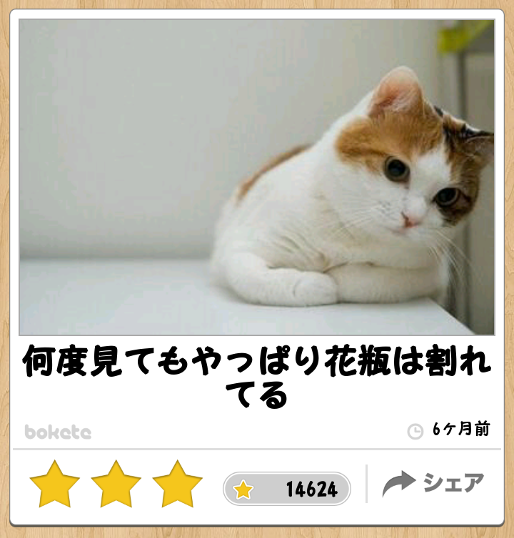 ダメと分かっているのにやめられないネコに世界が爆笑【動画】