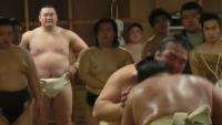 【大相撲・春場所】誰を応援しますか?