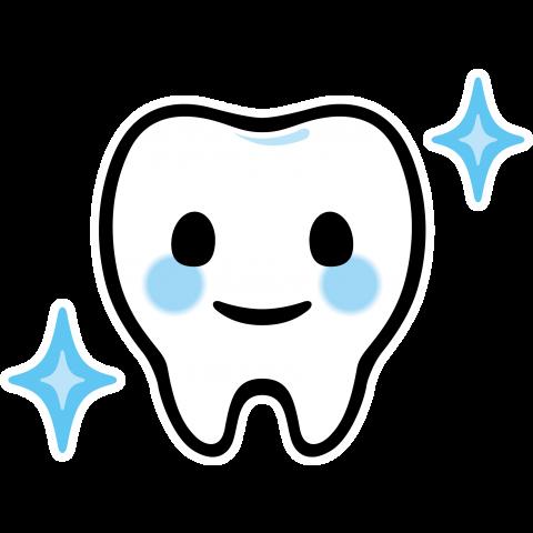 歯のホワイトコートについて