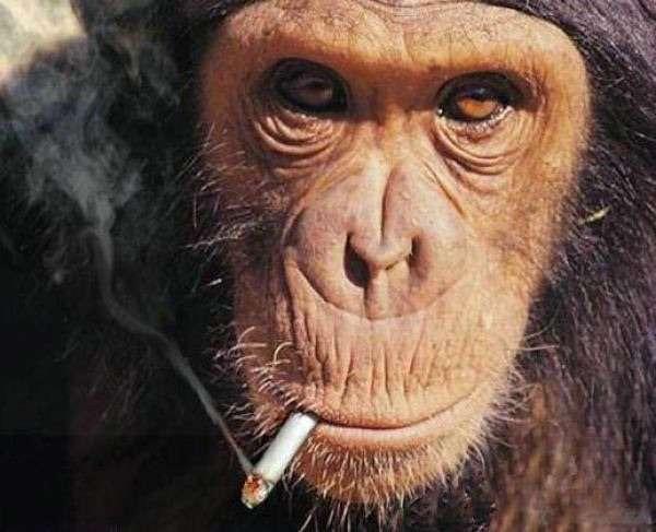 子どもの前での喫煙