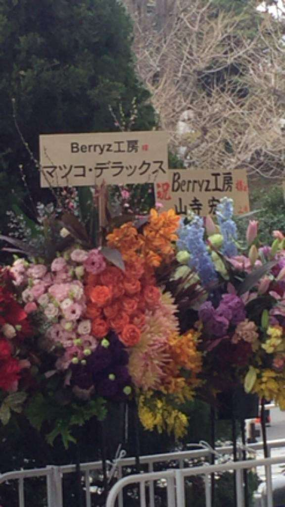 Berryz工房「永久に不滅です」デビューから11年、涙でピリオド