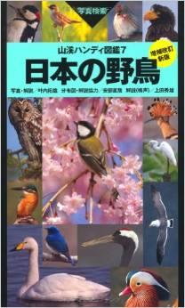 野鳥が好きな人