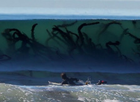 海が怖い方いますか?