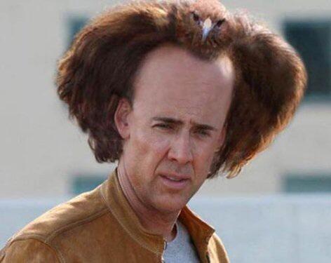 奇抜な髪型の芸能人の画像トピ