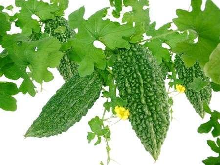 健康に良いと言われ、なるたけ食べる様にしている食材野菜ありますか。