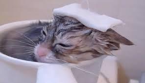 お風呂で何を考えてますか?