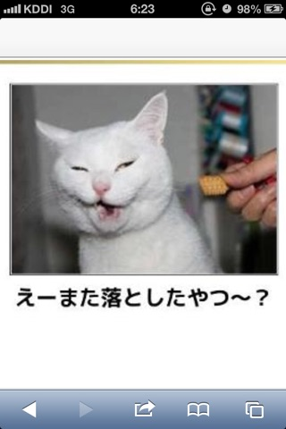 動物の「おこ」な画像