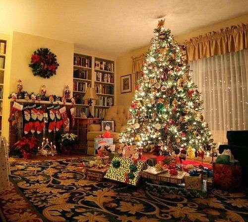 クリスマスツリーのおすすめ、教えて下さい!