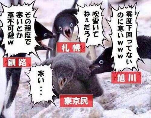 日本全国気温調査