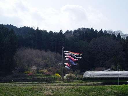 栃木県のオススメスポット