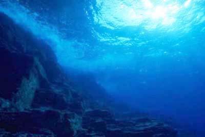 海が怖い人