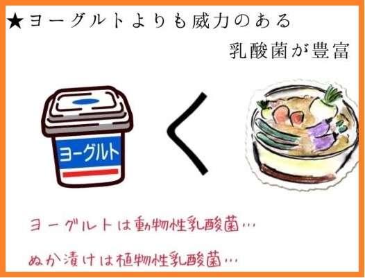 毎日食べてるもの(米やパン以外)