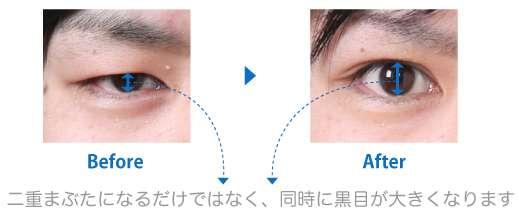 目がクリッと大きい男性と目が切れ長の細い男性どっちが好きですか?