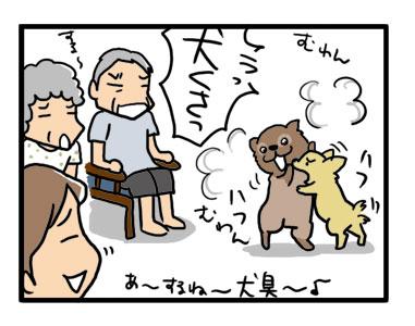 犬のにおい対策