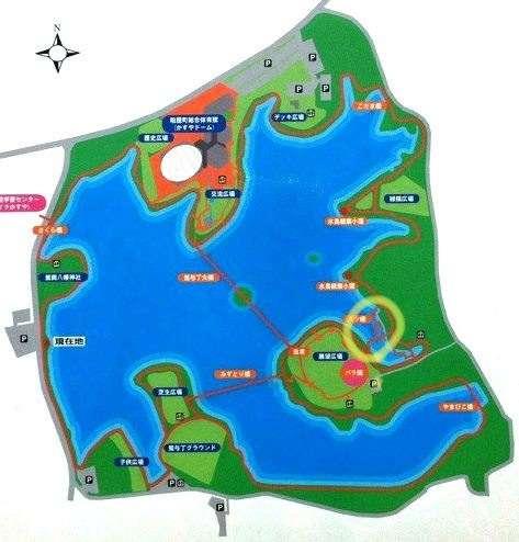 おすすめの公園