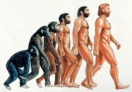 進化した噂