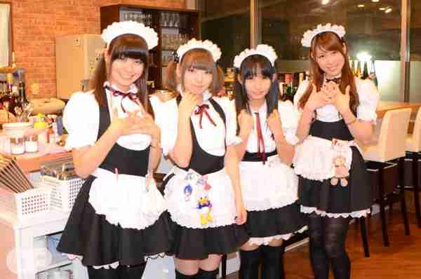 猫カフェに業務停止命令=全国初、環境劣悪で-東京都