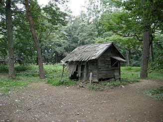 何歳の時にマイホームを持ちましたか?