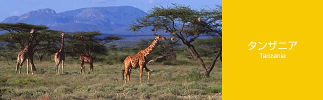 キッザニアに行ったことがある方!